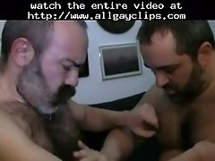 Superbears gay porn gays gay cumshots swallow stud hunk